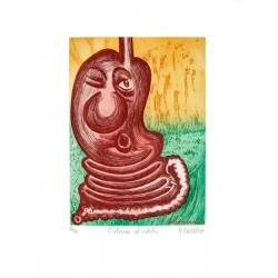 Estomac et intestin - Gravure de Hervé Dirosa