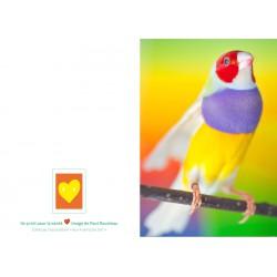 ART CARD ROUSTEAU