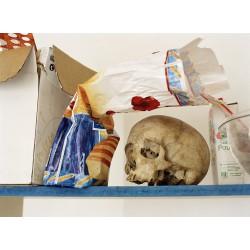 Skull & Bread